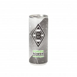 Fohlenpower Energy